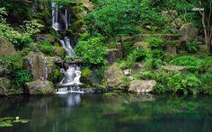 Wasserfall und Teich