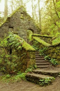 Dreamy location. Storybook Settings / The Stone House Forest Park Portland Oregon 8 x 12 by ndtphoto