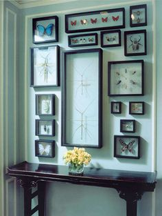 Decorating and Design Tips from Tom Stringer - Traditional Home® Style Blueprint Sept finds features framed butterflies from Ash Blue store. Here's an idea for display. Taxidermy Decor, Cabinet Of Curiosities, My Living Room, Interior Decorating, Decorating Ideas, Decor Ideas, Sweet Home, Gallery Wall, House Design