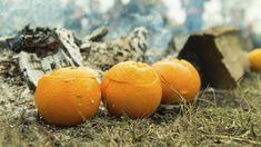 By: Mathias Thomsen Grilling, Orange, Fruit, Food, Crickets, Essen, Yemek, Grill Party, Meals