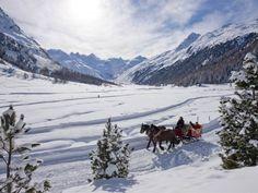 Pferdeschlittenfahrt | Aktivitäten | Schweiz | Schöne Aussichten