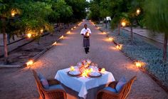 View the picture gallery of Bushmans Kloof luxury retreat showcasing photographs of the African landscape and wild life of this wilderness reserve. Outdoor Dining, Wilderness, South Africa, Beautiful Places, How To Memorize Things, Table Decorations, Landscape, Gallery, Pictures