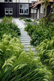 nz native garden design ideas - modern home interior design Outdoor Landscaping, Front Yard Landscaping, Outdoor Gardens, Landscaping Ideas, Garden Ideas Nz, Garden Inspiration, Gardening Photography, Garden Landscape Design, Landscape Grasses