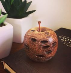 Hey, I found this really awesome Etsy listing at https://www.etsy.com/au/listing/263095314/unique-banksia-nut-apple-ornament
