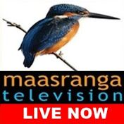Maasranga Television ( Maasranga TV Live ) is an HDTV television channel in Bangladesh. The channel got permission from Bangladeshi Government to telecast br. Live Cricket Match Today, Sports Live Cricket, Star Sports Live, Watch Live Cricket, Watch Live Tv, Colours Live Tv, Live Cricket Channels, Free Live Tv Online, Cricket Update