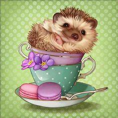 Hedgehog Art, Baby Hedgehog, Hedgehog Drawing, Animals And Pets, Baby Animals, Cute Animals, Image Tatoo, Wallpaper Kawaii, Dibujos Cute