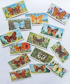 Vintage Brooke Bond Tea Cards - British Butterflies (1963) #butterflies #peonyandthistle