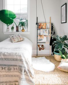 Magazine ladder/plants