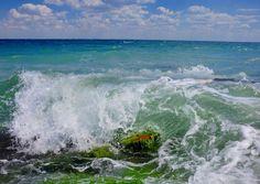 The sea breathes - Wave. Surf. Crimea, the Black sea, near Feodosia