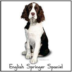 "Liver and White ENGLISH SPRINGER SPANIEL Dog  -One 18"" x 22"" fat quarter size fabric panel"