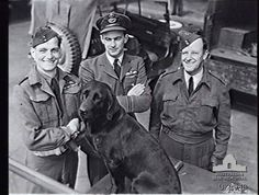 English RAF flying ace Johnny Johnson with his pet dog, along with Australian & New Zealand commanders - World War He commanded an RCAF wing during the war. North African Campaign, Lancaster Bomber, Flying Ace, The Valiant, War Dogs, Battle Of Britain, Fighter Pilot, Ww2 Aircraft, Royal Air Force