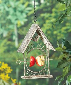 Display this Hanging Fruit Feeder in a tree, on a porch overhang or a shepherd's hook. Use it to offer fresh snacks to songbirds to vary their diets.