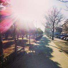 Un magnífico paseo