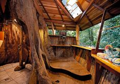 Dream Treehouses and Hotels around the World for your Bucket List   momooze