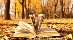 Book tag di Novembre
