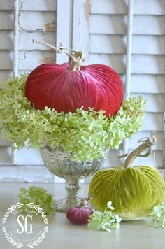 5 BEAUTIFUL WAYS TO STYLE PUMPKINS-Let's get creative with our pumpkins and do some amazing styling!- stonegableblog.com