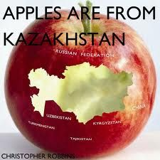 Kazakhstan has the largest apples in the world. Or says this site. Some things on this site are wrong, it appears to me that the person who made the site has never actually been to Kaz. Many places there do take credit cards. Kazakhstan Food, Kazakhstan Travel, Central Asia, International Recipes, People Around The World, Apple, Bizarre Facts, Silk Road, Credit Cards
