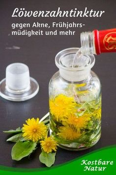 Dandelion tincture for acne, spring tiredness and more - Dandelion is a powerful medicinal plant! Use it as a medicinal tincture for your health against spr - Holistic Nutrition, Proper Nutrition, Health And Nutrition, Nutrition Shakes, Nutrition Guide, Health Tips, Holistic Remedies, Natural Home Remedies, Health Remedies
