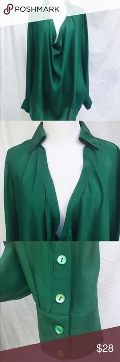 Haute Hippie Cowl Neck Blouse Green This blouse is sold out and originally retailed for $265.00.  Please see images. Due to fabric being 100% silk there are a few very slight pulls in the blouse. I have attempted to show in pics. I believe when wearing the blouse they are naked to the human eye. There is a slight stress in the fabric by the left armpit. Not very noticeable when wearing the blouse. Haute Hippie Tops Blouses