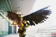 Hawkgirl from DC comics cosplay by Brittany Chaos photo by jonny Knows Photos Dc Cosplay, Best Cosplay, Hawkgirl, Sci Fi Characters, Amazing Cosplay, Movie Costumes, Bald Eagle, Dc Comics, Brittany