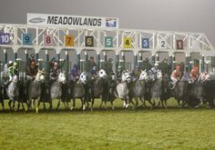 Even horse racing has a Halloween tradition with the annual Gray Ghost Handicap at the Meadowlands  in New Jersey. Named after the famous Native Dancer who raced in the early 1950's, this race is held on Halloween night and is restricted to gray horses only