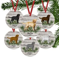 """Acquire terrific suggestions on """"labrador retriever pups"""". They are actually readily available for you on our site. Dog Christmas Ornaments, Christmas Dog, Building A Dog Kennel, Pine Branch, Branches, Grey Wood, Gray, Kraft Gift Boxes, Ornaments Design"""