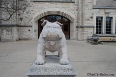 Bulldog in front of Atherton Union at Butler University Campus, Indianapolis, Indiana Dorm Photo Walls, City Of Indianapolis, Butler Bulldogs, Butler University, Alma Mater, Indie, Lion Sculpture, Collages, Road Trip