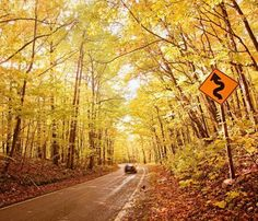 Spectacular fall scenery along Michigan's Tunnel of Trees. Details: http://www.midwestliving.com/travel/around-the-region/25-ultimate-fall-drives/?page=7