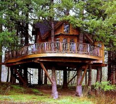 live in a tree house.or at least have a spare room in the tree house Future House, My House, Cool Tree Houses, Beautiful Tree Houses, House Beautiful, Curved Staircase, Spiral Staircases, Staircase Design, Cabin In The Woods