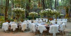 Preston Bailey is amazing!  Imagine having your wedding here!  The flowers make the event!