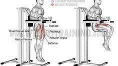 Captain's chair leg raise exercise