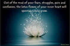 Out of the mud of your fears, struggles, pain and confusion; the lotus flower of your inner heart will spontaneously grow. Spiritually Ano...  #QUOTE #WISDOM #ADVAITA