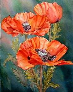 Red Poppies by marianne Broome Watercolor Poppies, Red Poppies, Watercolor Paintings, Original Paintings, Arte Floral, China Painting, Flower Art, Drawings, Artwork