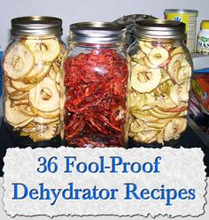 36 Fool-Proof Dehydrator Recipes - 7 Different Ways To Naturally Preserve Foods Canning Recipes, Raw Food Recipes, Healthy Recipes, Canning Tips, Dehydrated Food Recipes, Dehydrated Vegetables, Jar Recipes, Freezer Recipes, Freezer Cooking