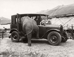 Amazing Vintage Photographs Captured Daily Life of Circus Performers of the Ringling Bros. Circus from the 1910s