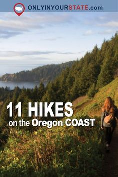 10 Unforgettable Hikes On The Oregon Coast That Will Drop Your Jaw Travel Oregon Coast Hikes, Oregon Coast Camping, Oregon Road Trip, Oregon Trail, Road Trips, Oregon Hiking, Oregon Vacation, California Camping, Southern California