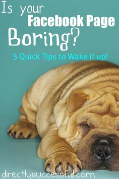 Is Your Facebook Page Boring? 5 Quick Tips to Wake it Up! | Directly Successful