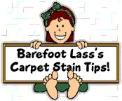 Carpet stain remover tips - Love the Tide, warm water and white vinegar combo - works great on old set in stains using a toothbrush to scrub