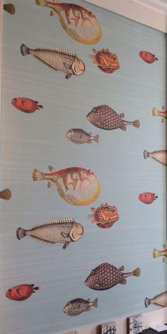 Behang vissen