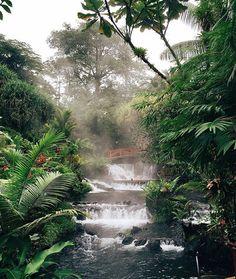 Heaven on earth!  A misty #paradise @tabaconresort hot springs via @yanayart! #CostaRica #vacations #crexperts