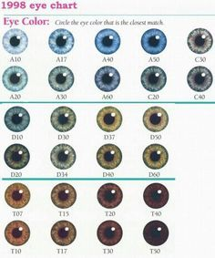new ideas eye color chart genetics Eye Color Chart Genetics, Colour Chart, Eye Color Facts, Blue Eye Facts, Eye Chart, Natural Eyes, Natural Hair, Colored Contacts, Copics