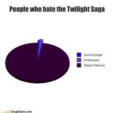 People who hate twilight Twilight Saga, Twilight Meme, The Hobbit, Hobbit Hole, You Have Been Warned, Robert Pattinson, Tumblr Funny, Hogwarts, I Laughed