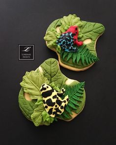 Lorena Rodriguez . Costa Rican cookies. Poison frogs