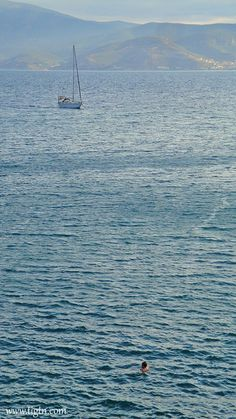 Man swimming off the coast of #Akronafplia in #Nafpio while a yacht enters the port for the evening. #Peloponnese - #Greece