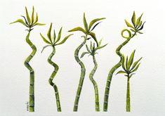 2 Kind, Lucky Bamboo, Plant Painting, Landscape, Portrait, Paper, Illustration, Plants, Handmade