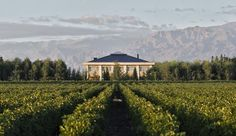 Casa Antucura: In Mendoza�s up-and-coming Uco Valley region, Casa Antucura is a boutique eight-suite retreat.