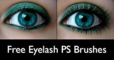 Free Eyelash Photoshop Brushes