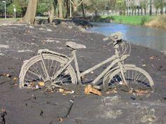 "Tomada del Facebook de ""Bicicleta"""