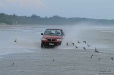 Five  Gentle touch  Road Trip Routes in Kerala