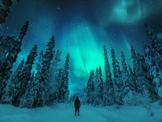 On the Hunt for the Northern Lights